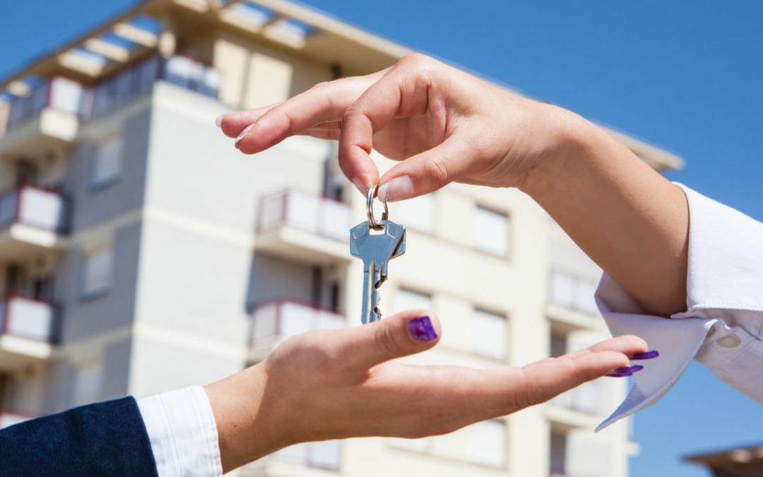 Freie Wohnungen und Häuser bis 100 m²
